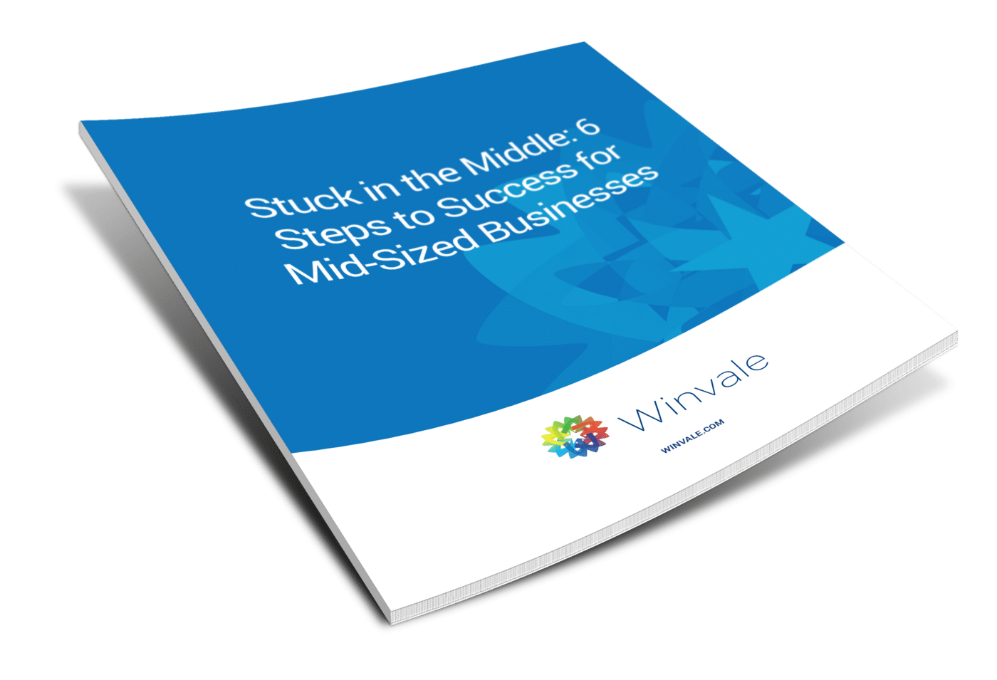 Stuck in the Middle: 6 Steps to Success for Mid-Sized Business