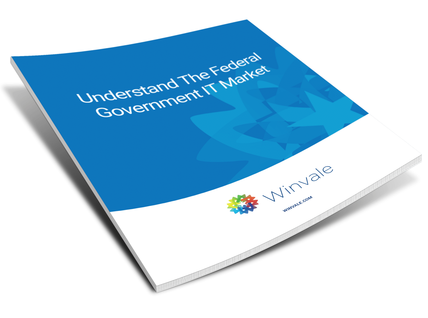 Whitepaper_Image_-_Understand_the_Federal_Government_IT_Market.png