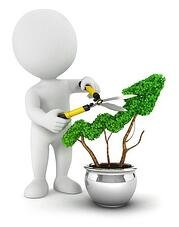 business_development_program