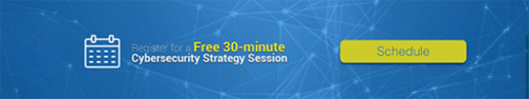 Schedule a free 30-minute Cybersecurity Strategy Session with Winvale
