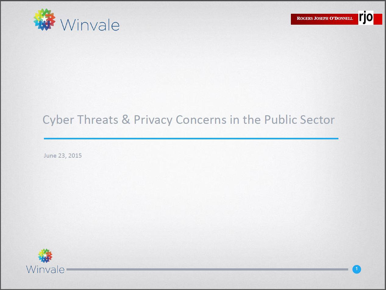 Cyber Threats & Privacy Concerns in the Public Sector