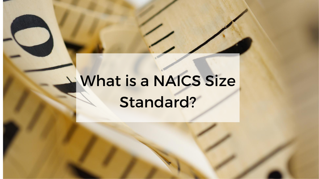 What is a NAICS Size Standard?